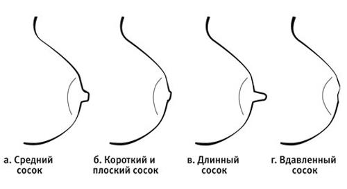 секс фотососков разных форм